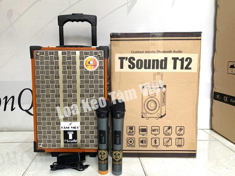 Loa kéo mini T'Sound T12 bass 2 tấc