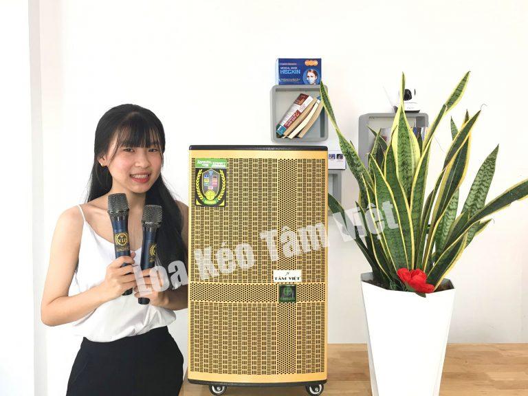 Loa kéo T'Sound T39 công suất lớn bass 3 TẤC